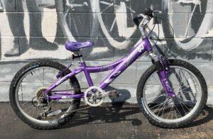 USED Trek Mt Trek 60 Purple 24″ – $170